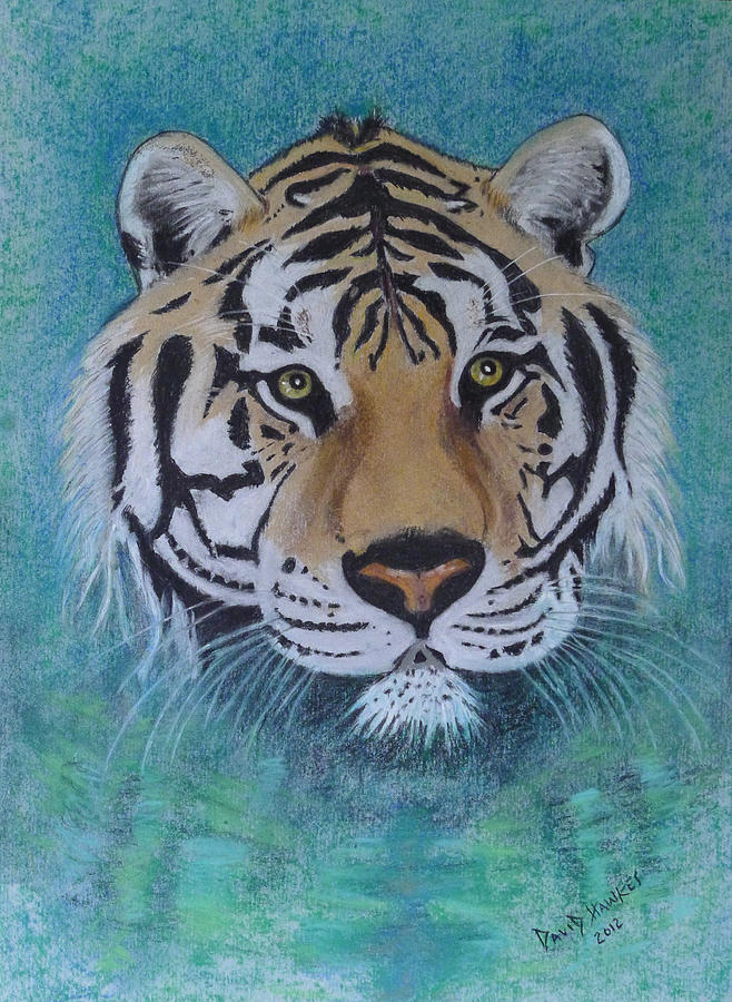 Bengal Painting - Bengal Tiger In Water by David Hawkes