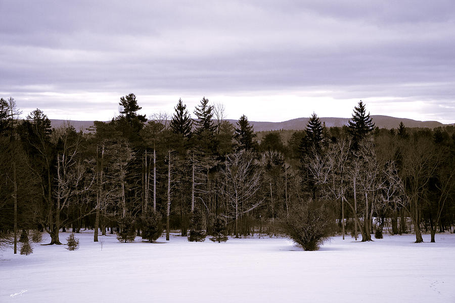 Massachusetts Photograph By Madeline