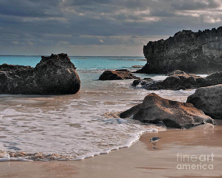 Bermuda Beach by Bobbie Turner