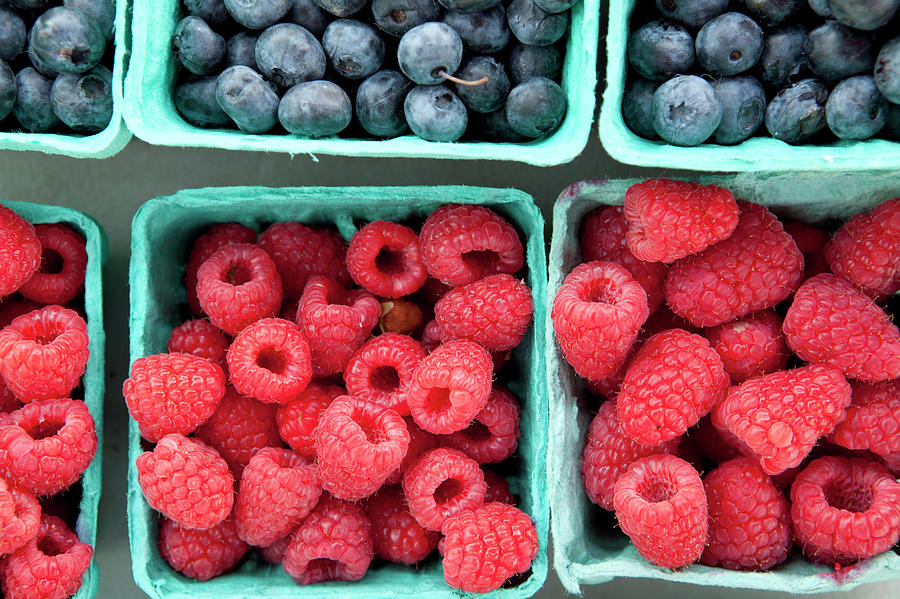 Berries At A Farmers Market Photograph by Lauren Krohn