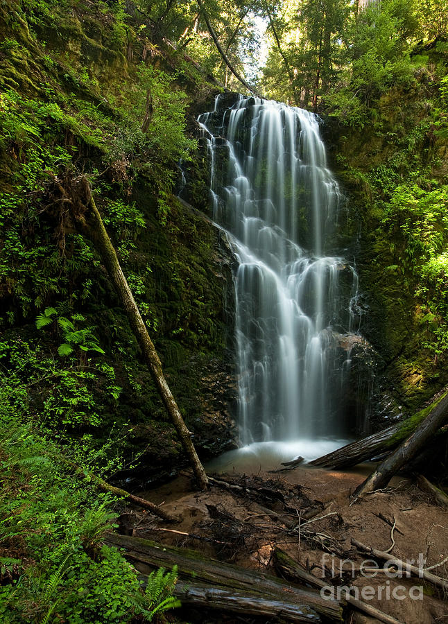 Panorama Photograph - Berry Creek Falls In Big Basin by Matt Tilghman