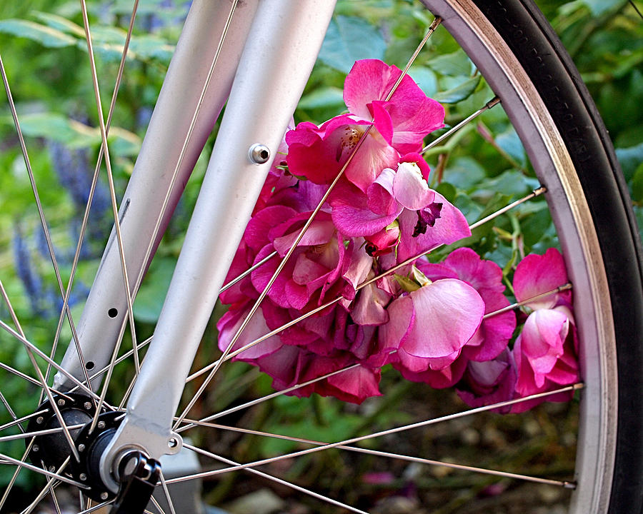 Bicycle Photograph - Bespoke Flower Arrangement by Rona Black