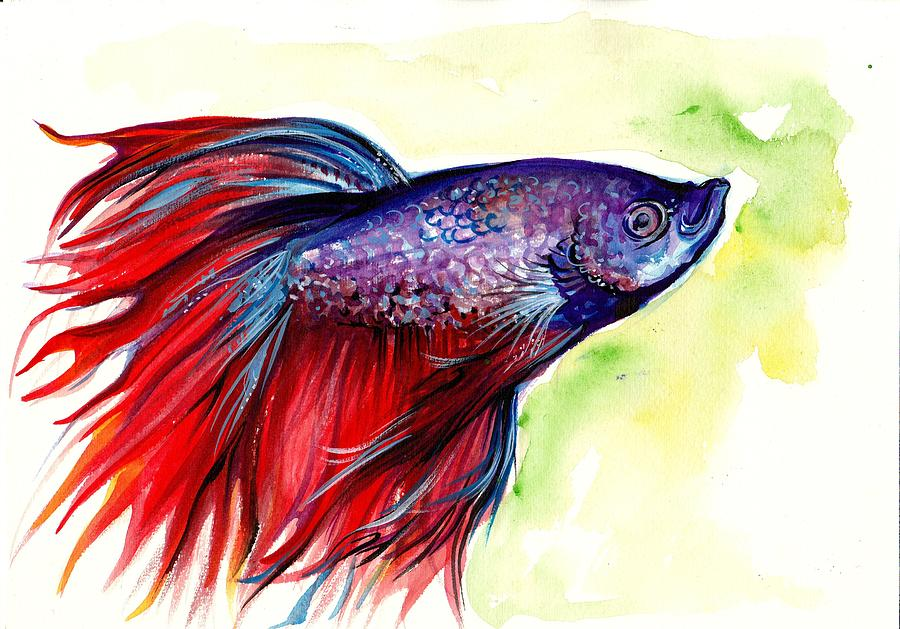 Beta splendens watercolor fish painting by tiberiu soos for Betta fish painting