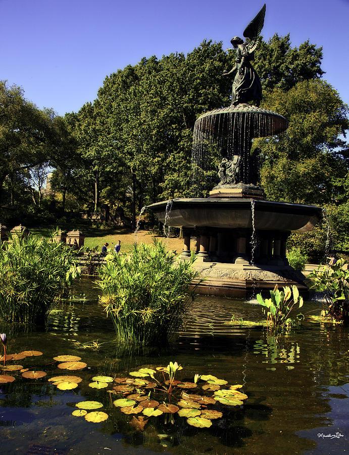 Bethesda Fountain Photograph - Bethesda Fountain - Central Park 2 by Madeline Ellis
