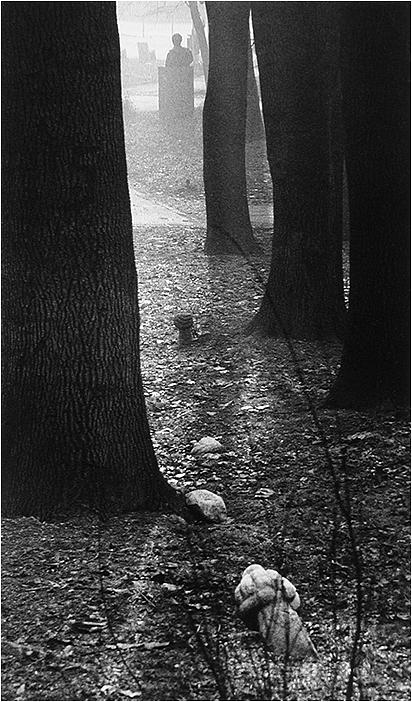 Symbolism Photograph - Better Tomorrow _ Tombstones In Forest by Mirza Ajanovic