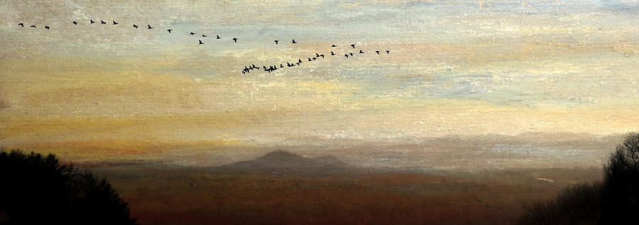 Between Sparta And Tomah 1 Mixed Media by R Kyllo
