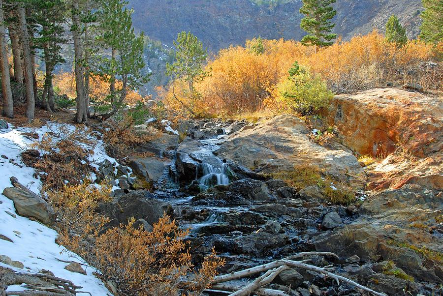Fall Photograph - Between The Virginias by Lynn Bauer