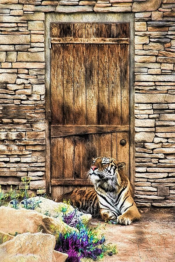 Beware of House Cat Beautiful Tiger by Tracie Kaska