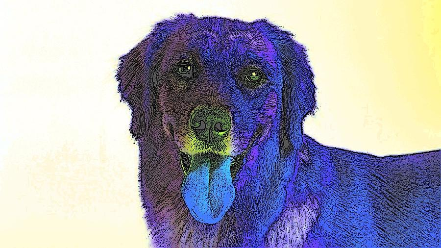 Dog Digital Art - Beyond Purple by Kathy Budd