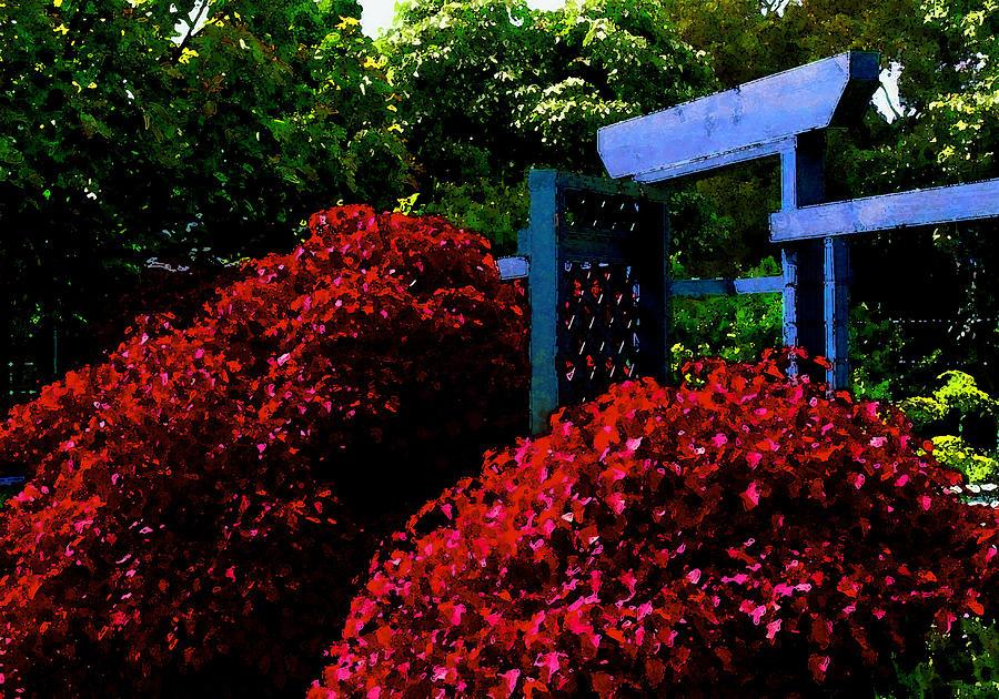 Beyond The Garden Gate Photograph - Beyond The Garden Gate by James Temple