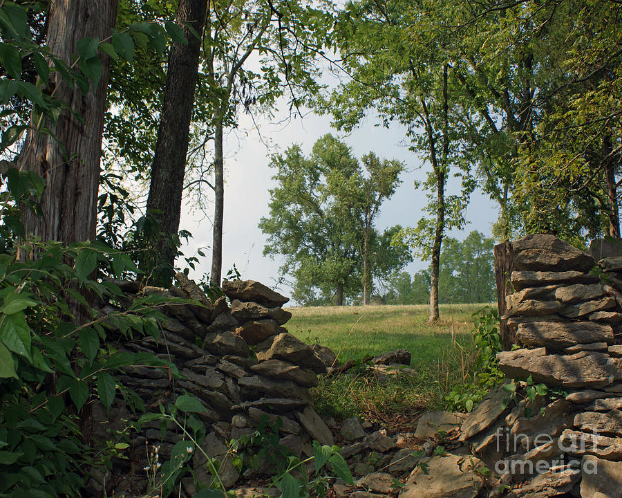 Kentucky Painting - Beyond The Rock Fence by Roger Potts