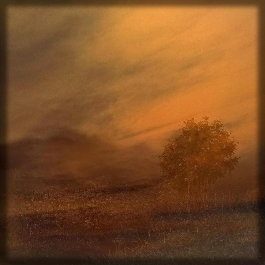 Scotland Photograph - Beyond The Rowan Tree by Liz  Alderdice