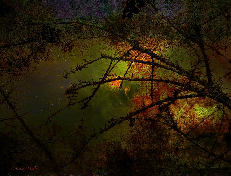 Silhouette Digital Art - Beyond The Thorns by J Larry Walker