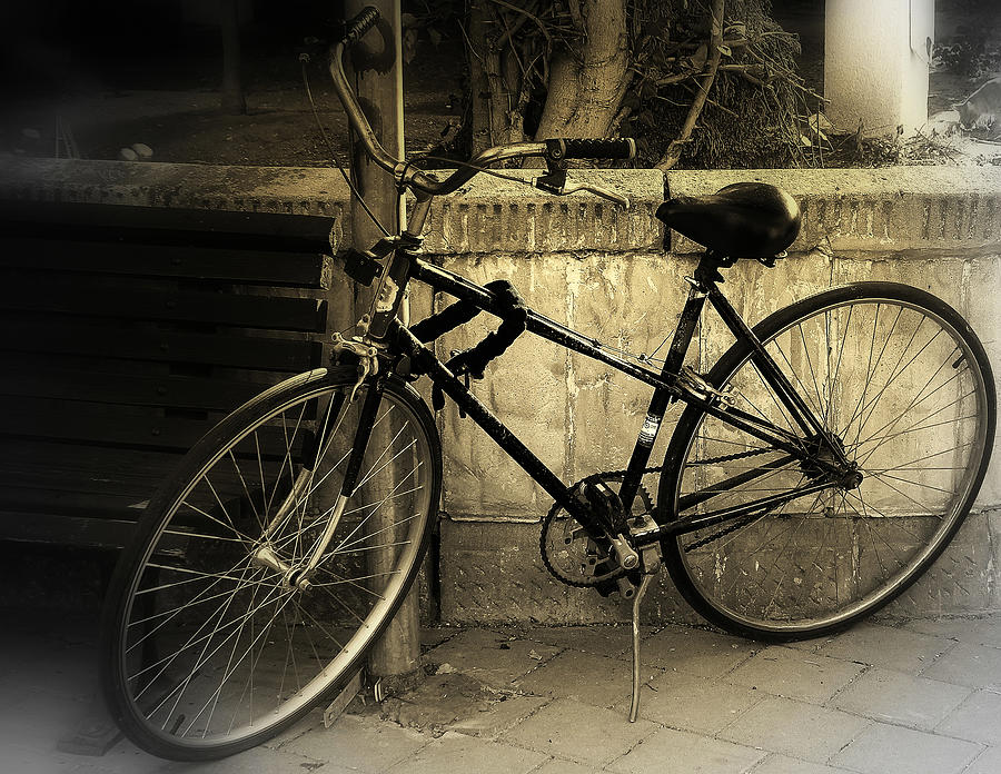 Bicycle Photograph by Amr Miqdadi