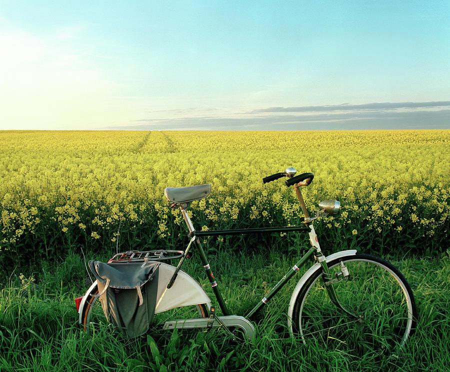 Bicycle By Rape Field Photograph by Muriel De Seze