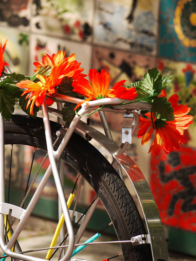 Bicycle Flowers Photograph