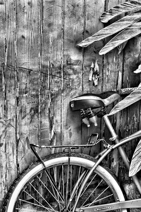 Bicycle In Black And White Photograph by Nathan Porath