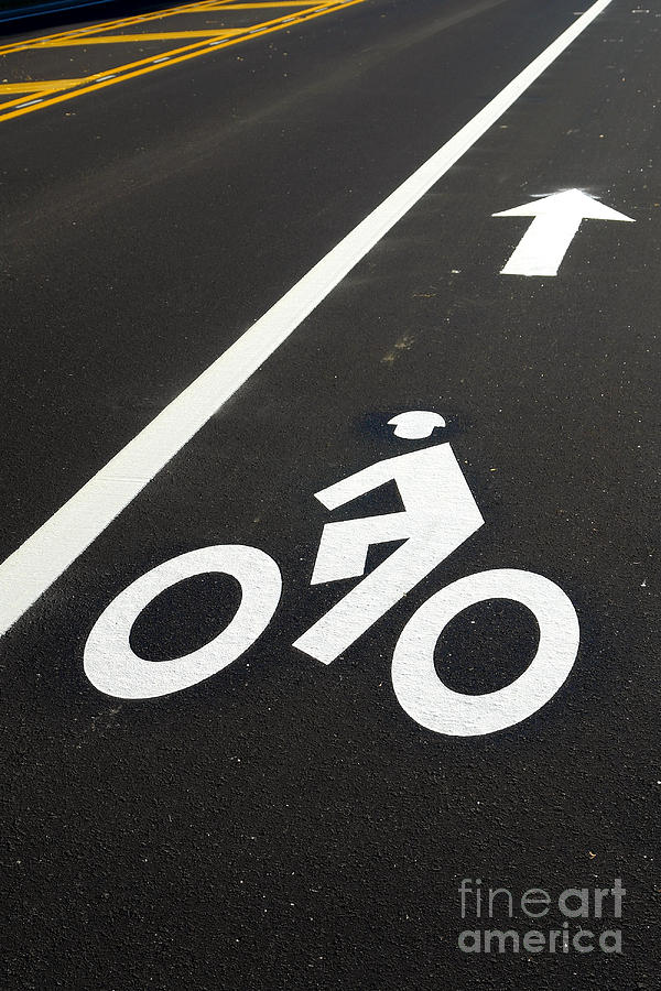 Bicycle Photograph - Bicycle Lane by Olivier Le Queinec