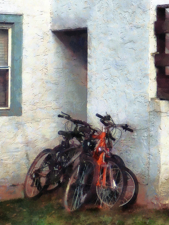 Bicycle Photograph - Bicycles In Yard by Susan Savad