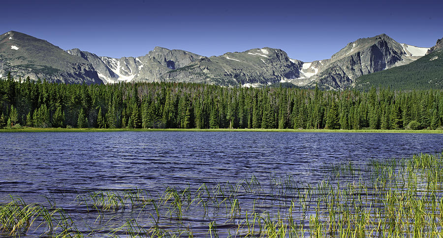 Colorado Photograph - Bierstadt Lake by Tom Wilbert