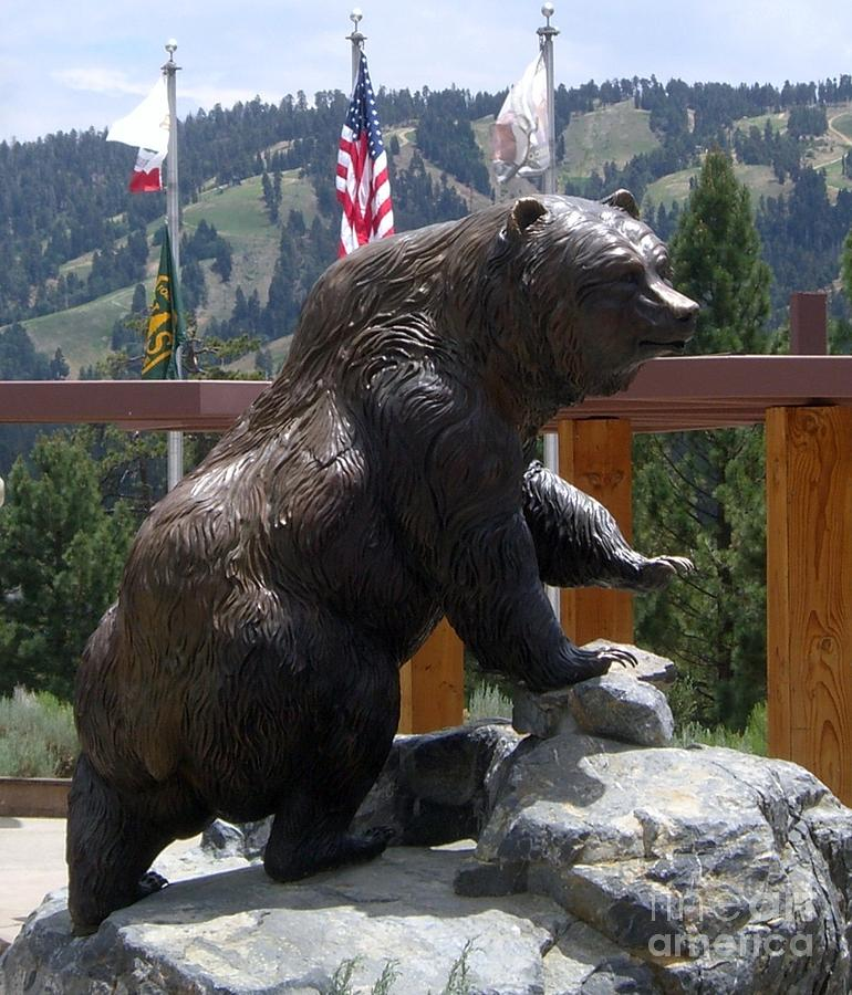 Big Bear Photograph