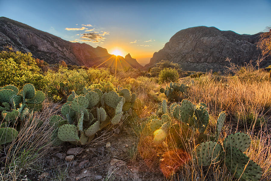Big Bend Window by Chris Multop