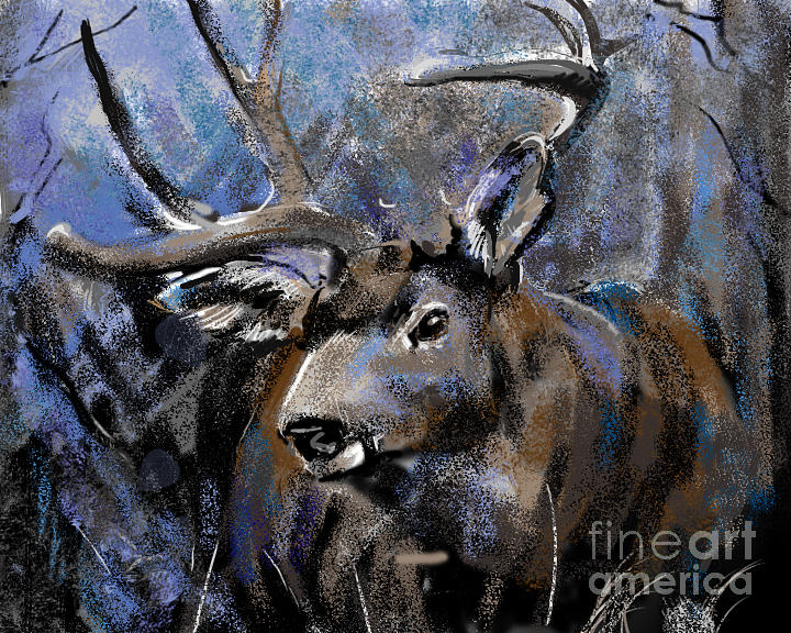 Big Buck by Synnove Pettersen