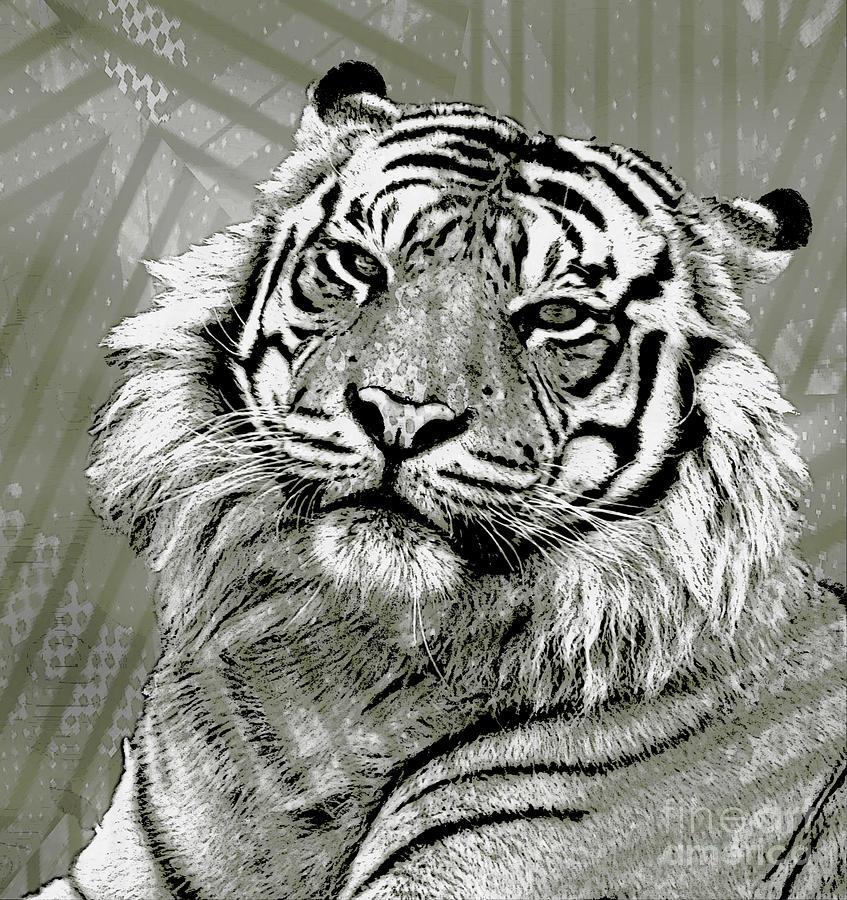 Animal Photograph - Big Cat by Ben Yassa