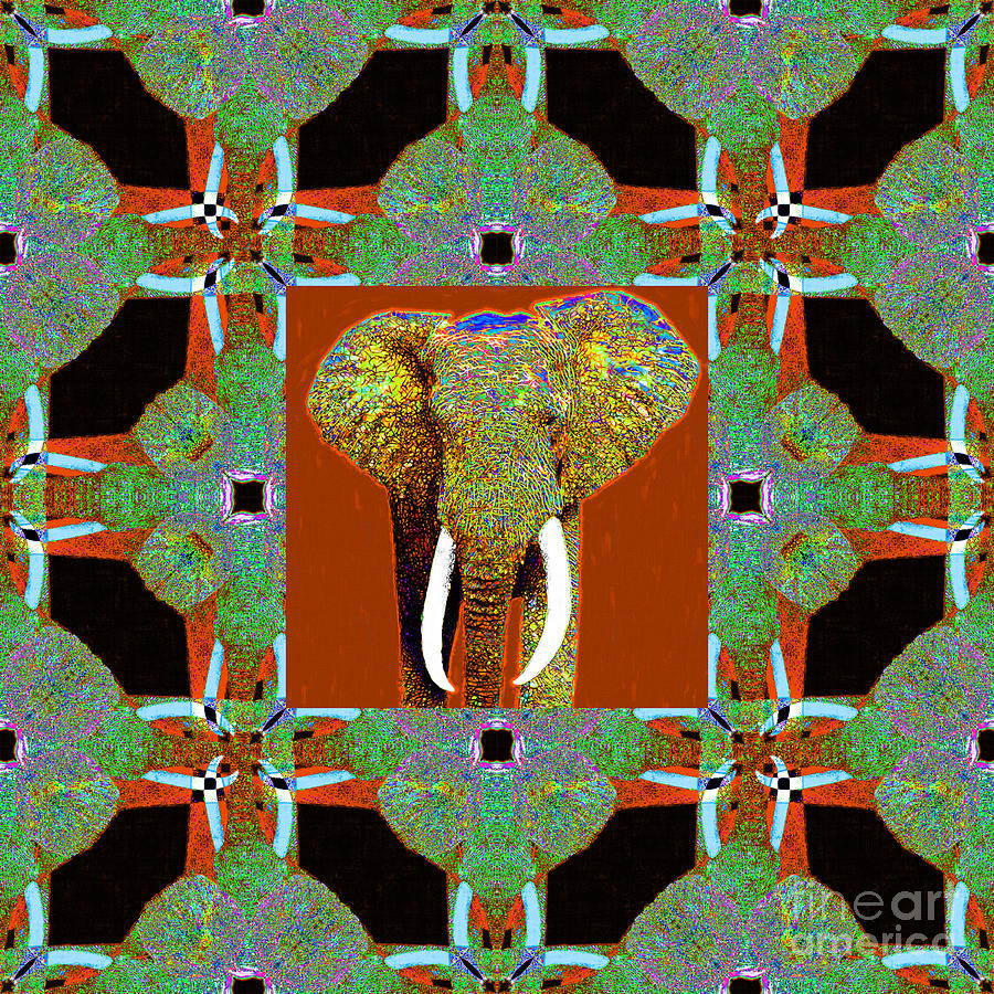 Elephant Photograph - Big Elephant Abstract Window 20130201p20 by Wingsdomain Art and Photography