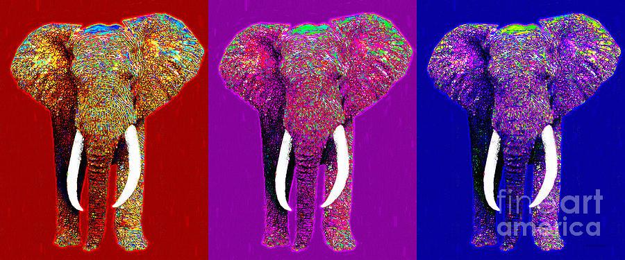 Elephant Photograph - Big Elephant Three 20130201v2 by Wingsdomain Art and Photography