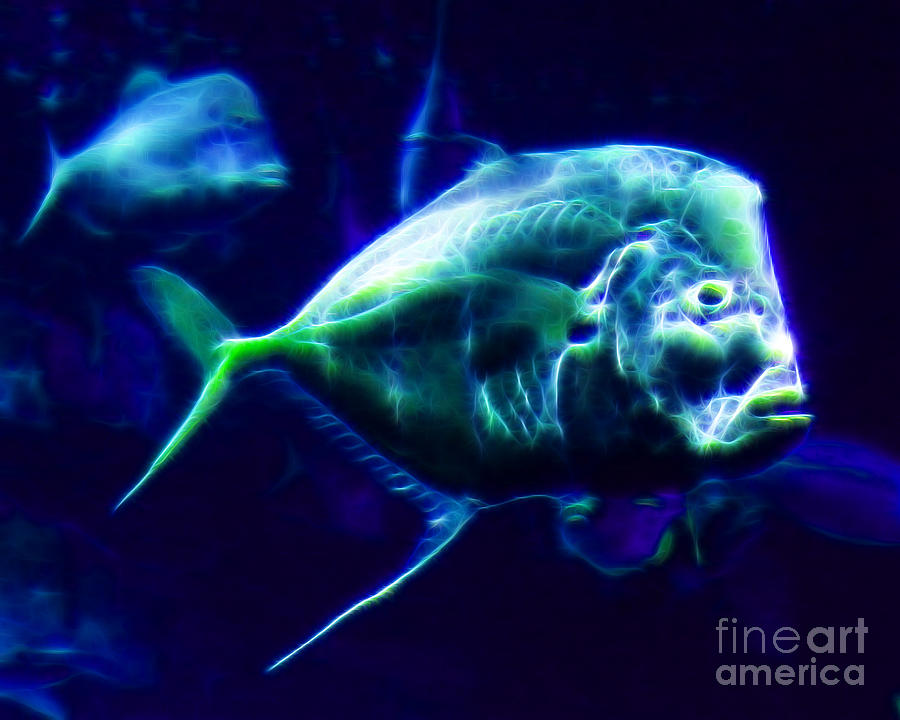 Big Fish Photograph - Big Fish Small Fish - Electric by Wingsdomain Art and Photography