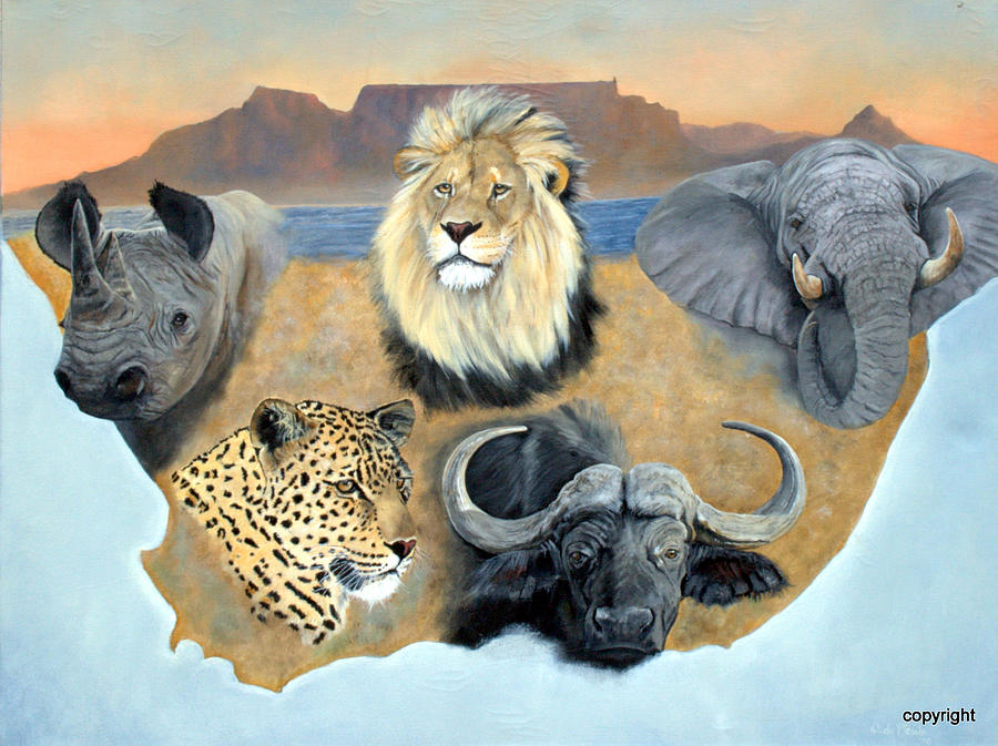 Embroidery Designs African Animals