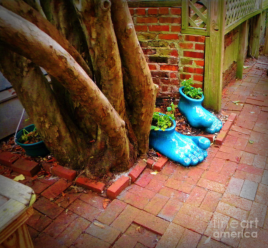 Photograph - Big Foot Left His Filo Shoes Behind by Lorraine Heath