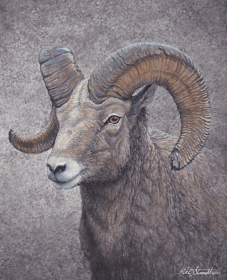 Wildlife Painting - Big Horn Ram by Mike Stinnett