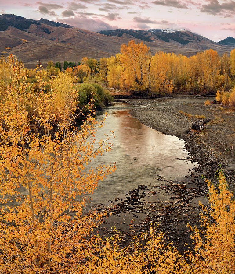 Autumn Photograph - Big Lost River In Autumn by Leland D Howard