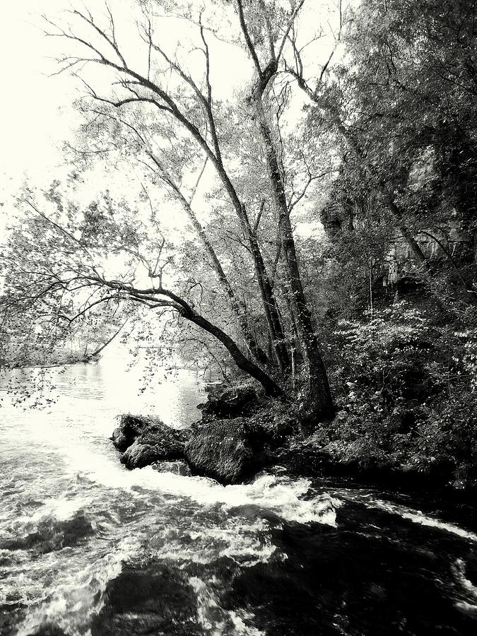 Black And White Photograph - Big Spring In B And W by Marty Koch