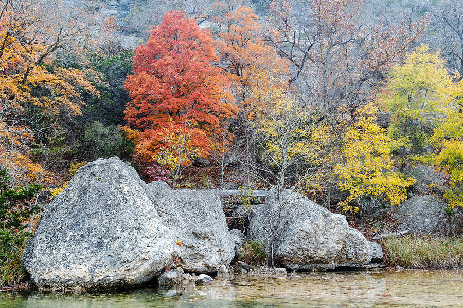 Lost Maples Photograph - Bigtooth Maple And Rocks Fall Foliage Lost Maples Texas Hill Country by Silvio Ligutti
