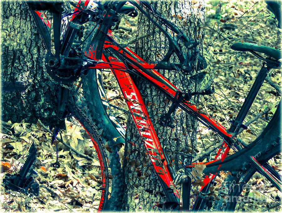 Bike Photograph - Bike By Wilderness  by Steven Digman