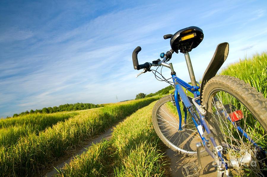 Bike On The Summer Field Photograph