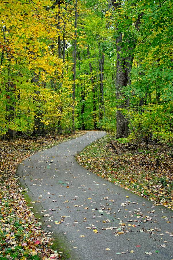 Pathway Photograph - Bike Path by Frozen in Time Fine Art Photography