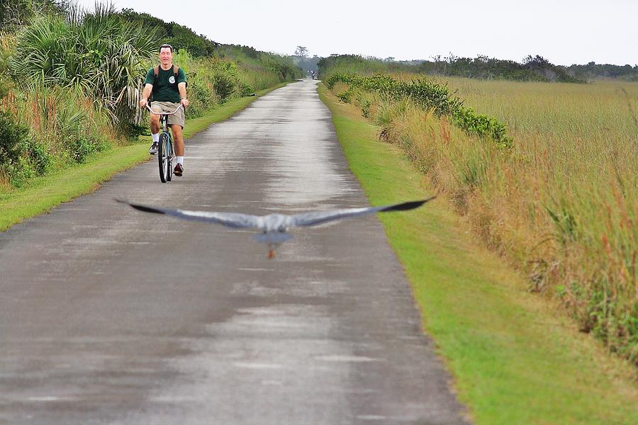 Biker And The Bird Photograph