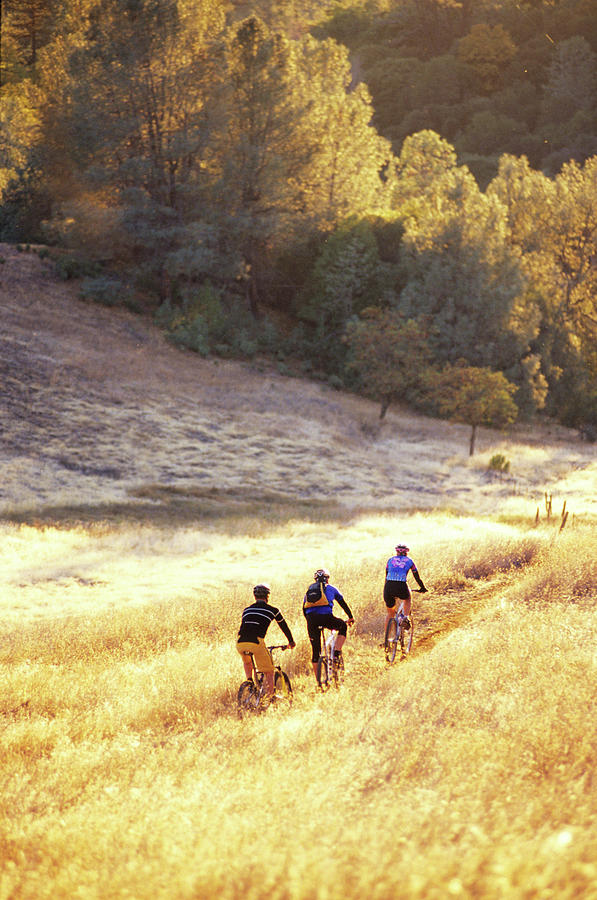 Action Photograph - Bikers On Foresthill Divide Trail by Scott Markewitz