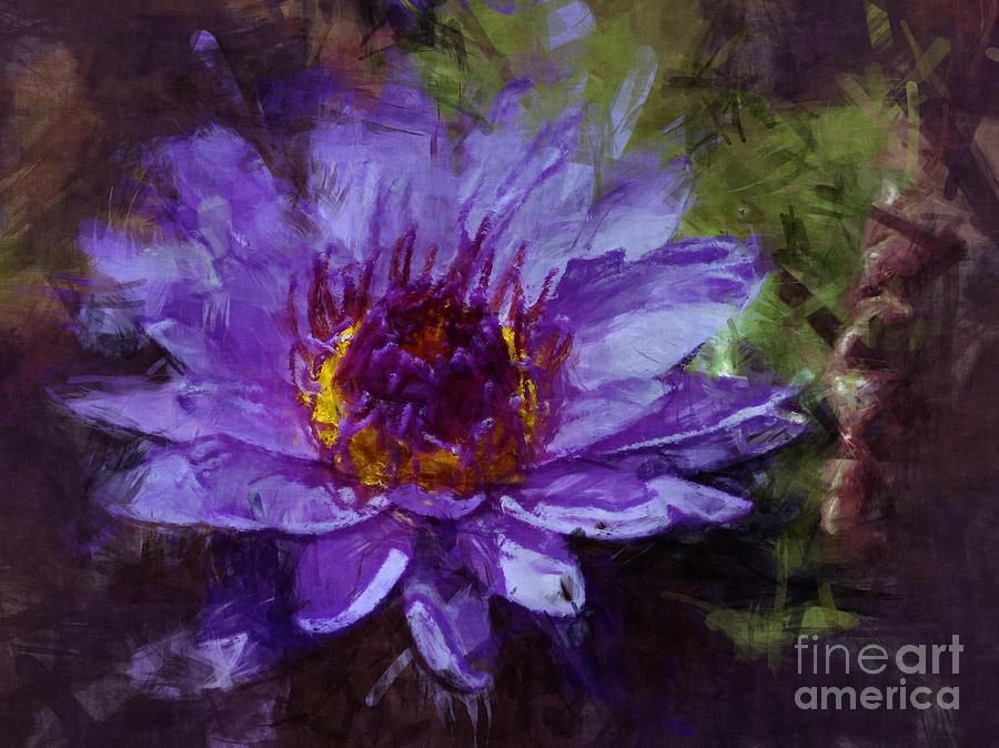 Flower Photograph - Biltmore Estate Water Lily Garden #2 by Jack Gannon