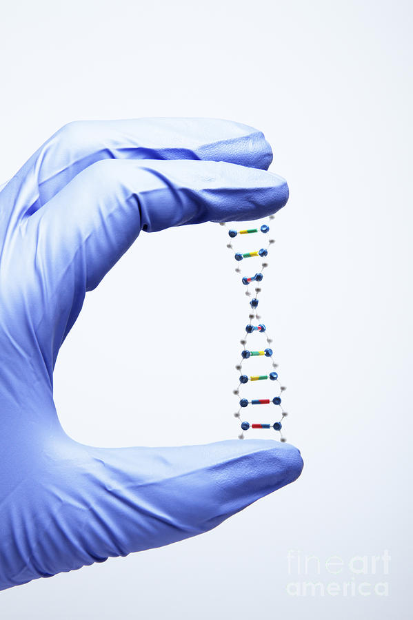 Dna Photograph - Biology Research by GIPhotoStock