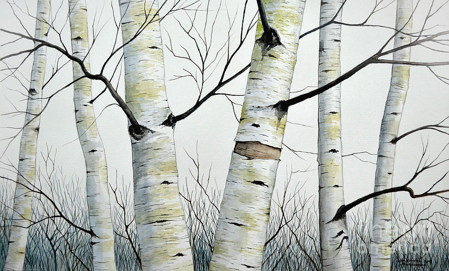 Birch Painting - Birch Trees In The Forest By Christopher Shellhammer by Christopher Shellhammer