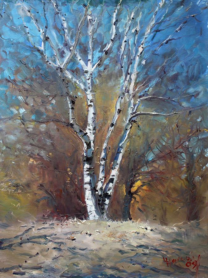 Birch Trees Painting - Birch Trees by Ylli Haruni