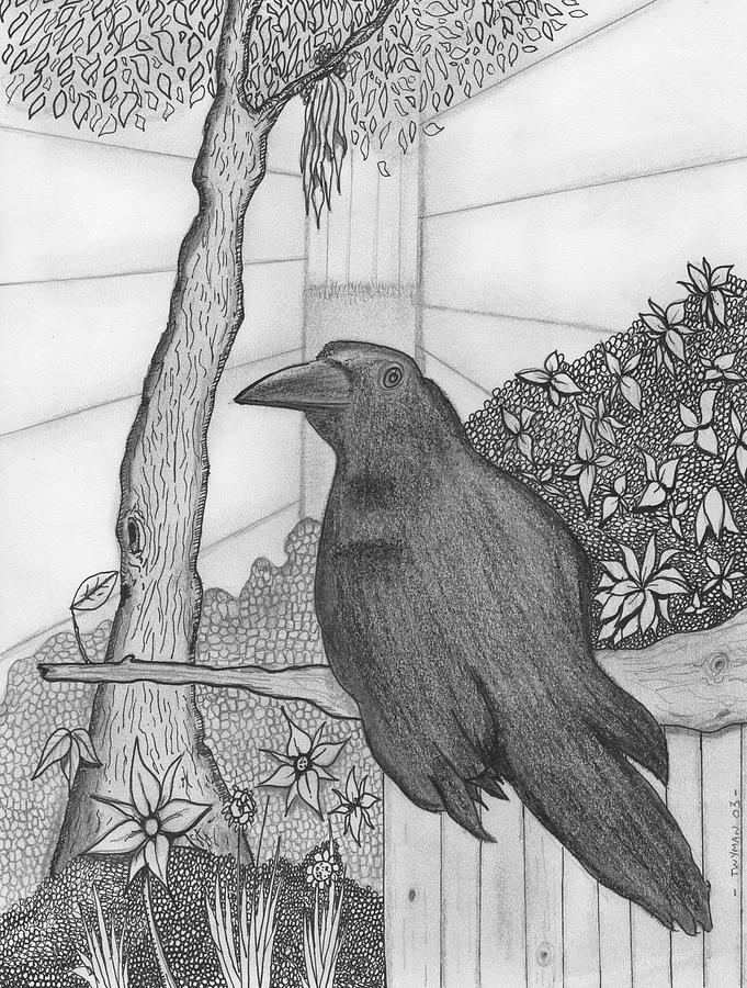 Aviary Drawing - Bird by Dan Twyman
