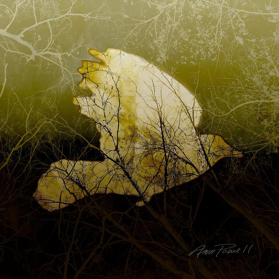 Bird Photograph - Bird IIi by Ann Powell
