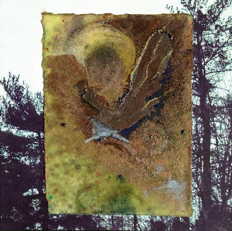 Collage Mixed Media - Bird by Marie Tosto