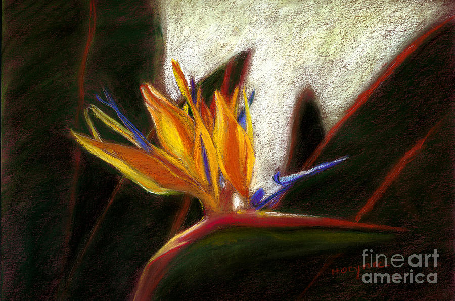 Bird Of Paradise Painting - Bird Of Paradise by Addie Hocynec